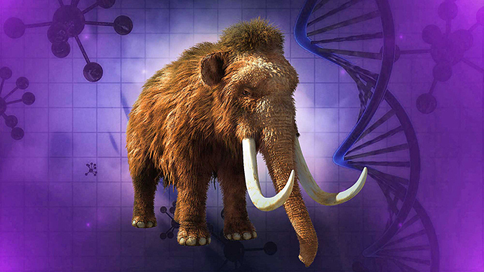 woolly-mammoth-clone